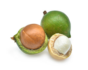 Macadamia isolated on white background