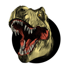 dinosaur head sketch vector color drawing