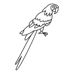 Parrot icon, simple style