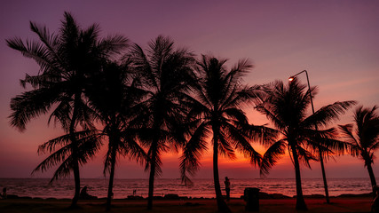 Silhouette of coconut tree with Twilight sunset at the beach, background.