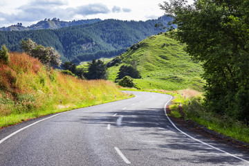 winding road New Zealand