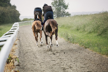 Two horses and riders racing against each other