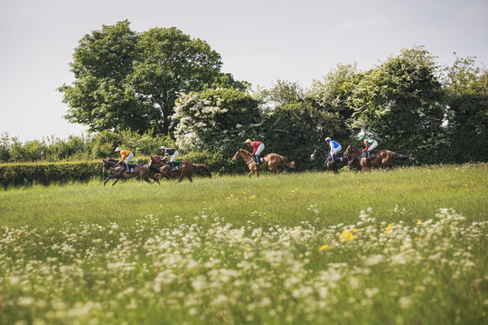 Group of riders on racehorses during a steeplechase. Low angle view.