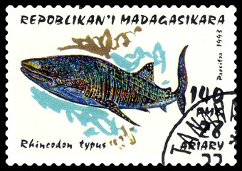 Postage stamp. Rhincodon typus.