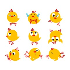funny chickens package
