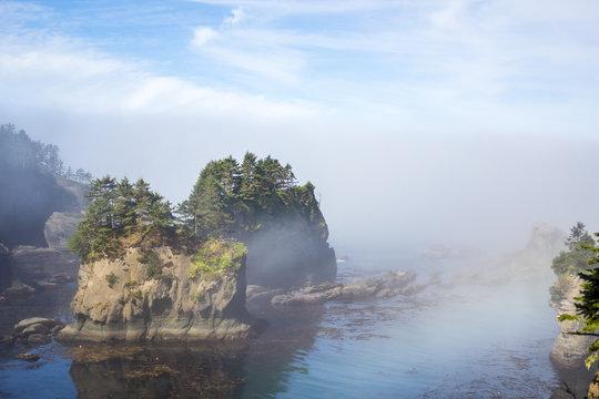 Monoliths in the Fog, Cape Flattery