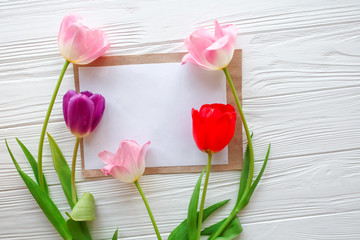 Wooden white background,letter and  tulips.  March 8, Mother's Day.