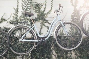 Vintage bike suspended on the wall in garden.Soft focus and vintage color toned.