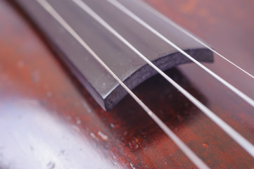 one violin image .old brown stringed wooden instrument close up view