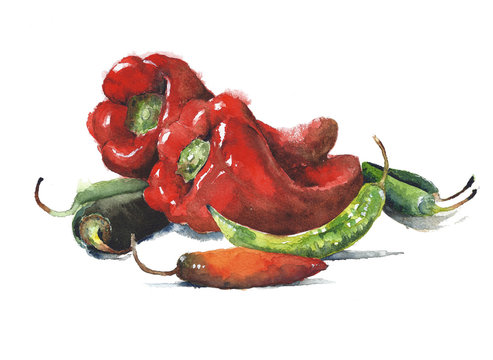 Peppers watercolor painting isolated on white background