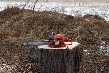 Pilarka łańcuchowa spalinowa leży na ściętym pniu drzewa