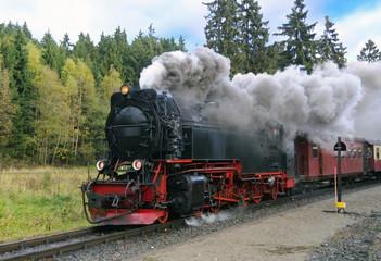 Harz Narrow Gauge Steam Train in clouds of smoke, Germany