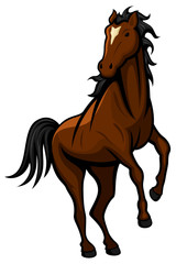 Vector illustration of a wild horse.
