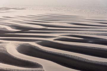 Fotomurales - おこしき海岸の干潟
