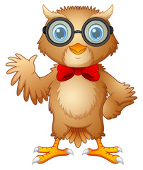 Hipster owl in glasses  and bow tie