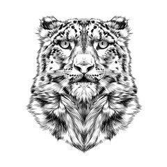 Wall Murals Hand drawn Sketch of animals the head of the snow leopard, full face, symmetry, black and white drawing, sketch, vector, graphics