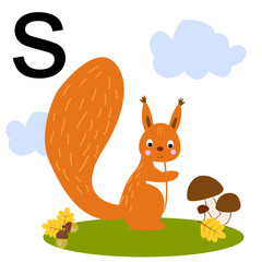 Cute illustration of a squirrel. Mushrooms, acorns, autumn. Protein with a letter of the alphabet.