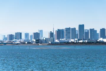 Tokyo's Skyline - 東京のスカイライン1
