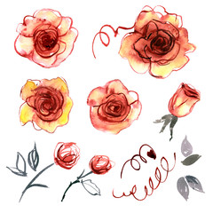 Watercolor hand painted flower elements for invitation, wedding card, birthday card. Dark-red roses.