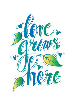 Romantic love lettering. Love grows here.