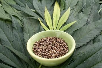 Marijuana hemp seeds in a dish with cannabis leaves background