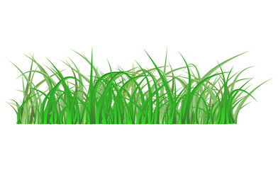 Green grass isolated vector symbol icon design.