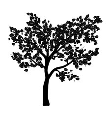 tree silhouette  isolated vector symbol icon design.