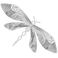 Dragonfly illustration on simple white background