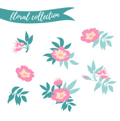 Vector floral set. Colorful floral collection with hand drawn leaves and flowers. Spring or summer design for invitation, wedding or greeting cards.