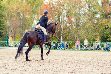 Young rider girl on bay horse galloping towards a hurdle on show jumping competition