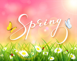 Pink spring background with grass and flowers