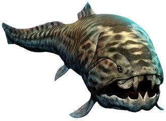 Wall Mural - Dunkleosteus