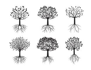 Set of Black Trees.