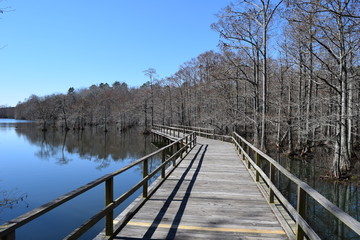Pier at the lake by the cypress swamp in Wall Doxey State Park, Mississippi