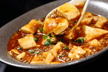 麻婆豆腐 Mapo tofu