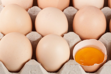 Eggs in the tray as a background