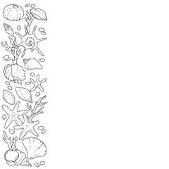 vector black white contour sketch of sea shells frame line