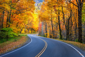Winding road, autumn foliage, Great Smoky Mountains