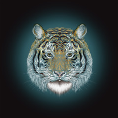 The majestic tiger, painted smooth lines, on a dark background