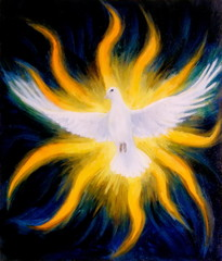 Dove on abstract background in light flame. Painting and graphic design.