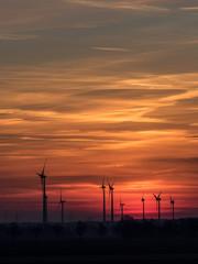 Wind power plants at sundown