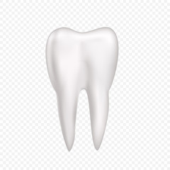 Tooth on transparent background