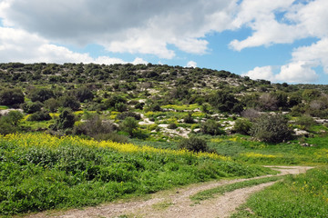 Judean Hills in Israel