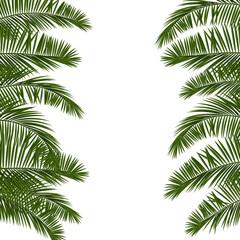 Hello Summer green palm leaf