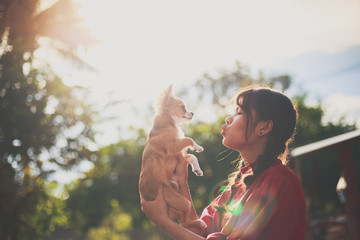 Silhouette photo of young woman with a ponytail giving a kiss to her cute little brown chihuahua dog. Dog Lovers concept.
