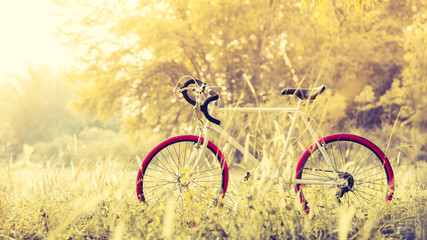 Sport Vintage Bicycle with Summer grass field ; vintage filter style