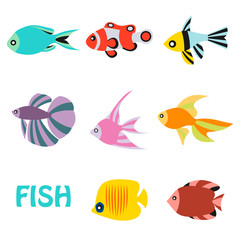 Stylized aquarium ornamental river and sea fish