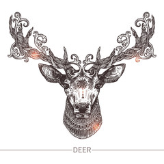 Ornamental Tattoo Deer Head. Highly Detailed Abstract Hand Drawn Style
