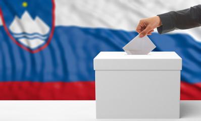 Voter on a Slovenia flag background. 3d illustration