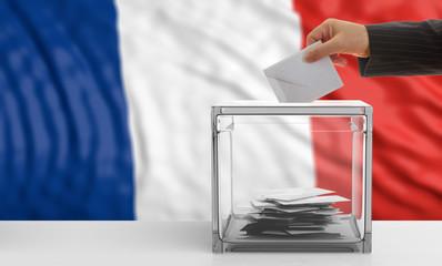 Voter on a France flag background. 3d illustration